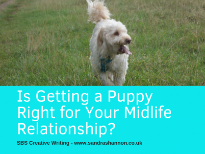 Is Getting a Puppy Right for your Midlife Relationship?